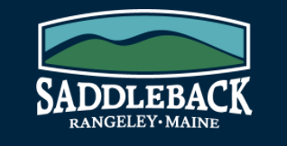 auction saddleback logo